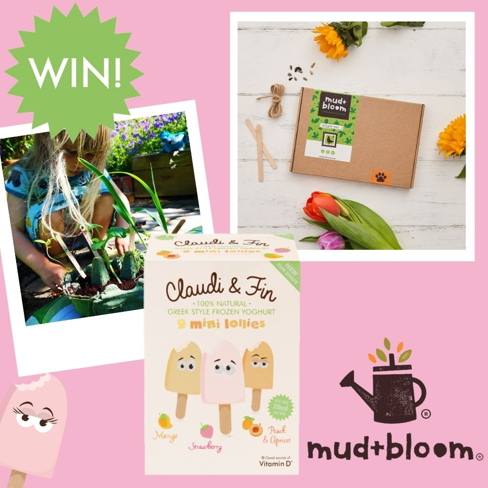 Claudi and Fin Mud and Bloom competition