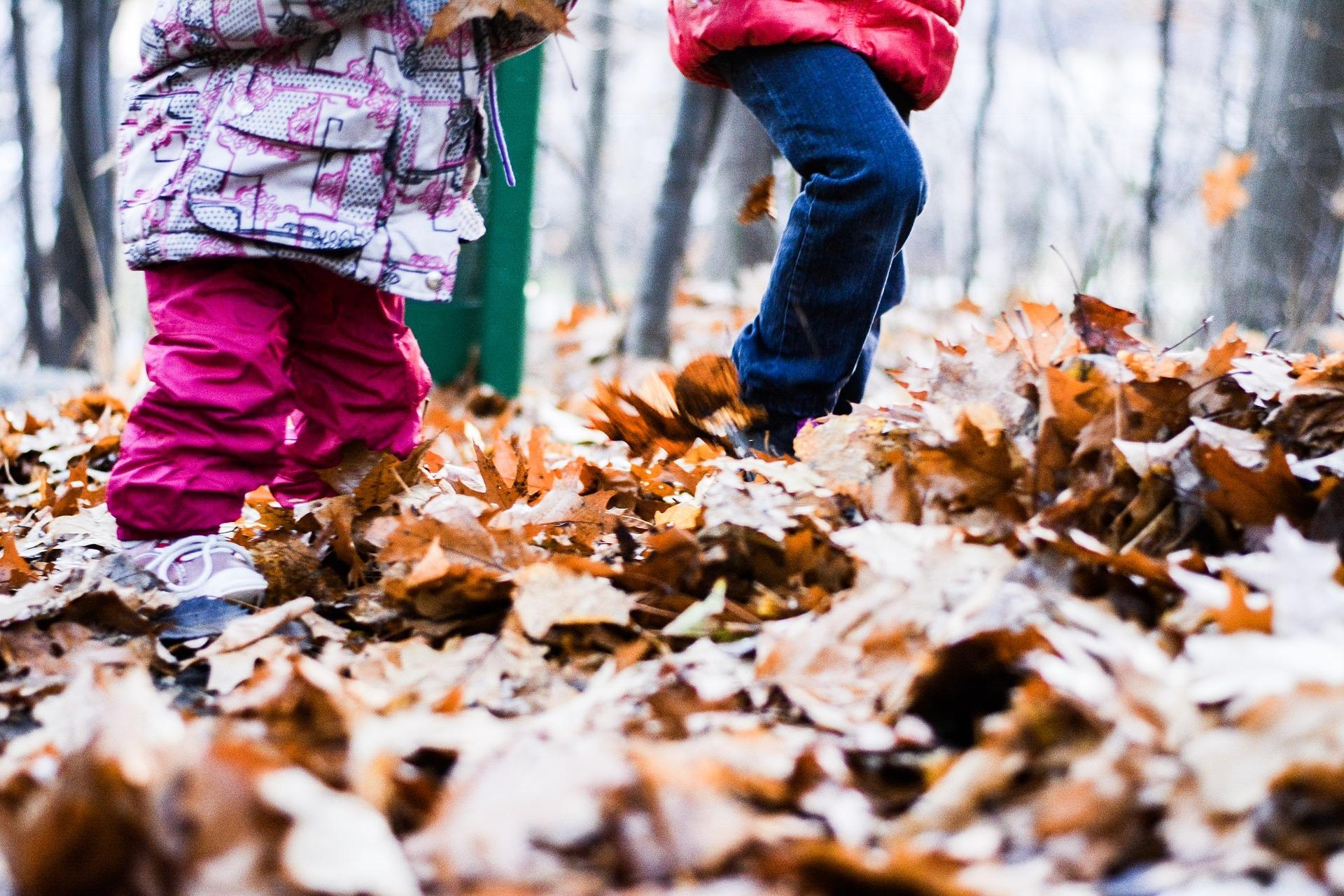 Children running through autumn leaves